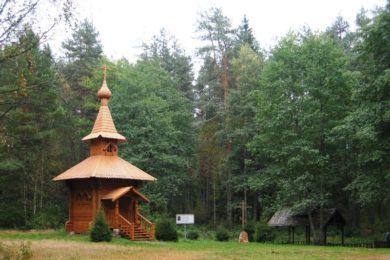 Школьная экскурсия Национальный парк «Орловское полесье»