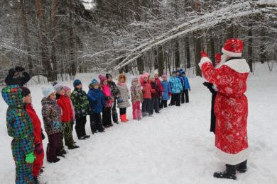 Хутор ПЕСОЧНОЕ <br> Новогодняя / Рождественская Ёлка